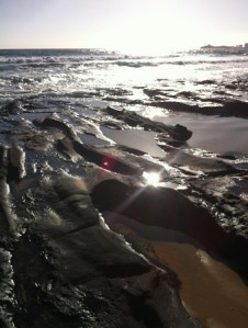 sunlight on the ocean and rocky shore