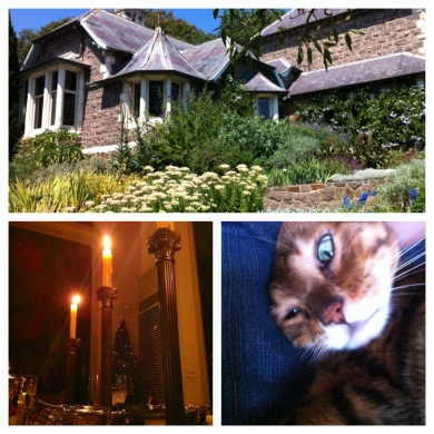 Montage of cottage, candles and cat